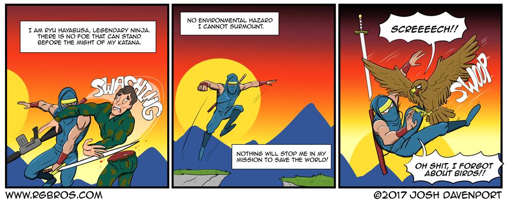 Rgbros Ninja Problems